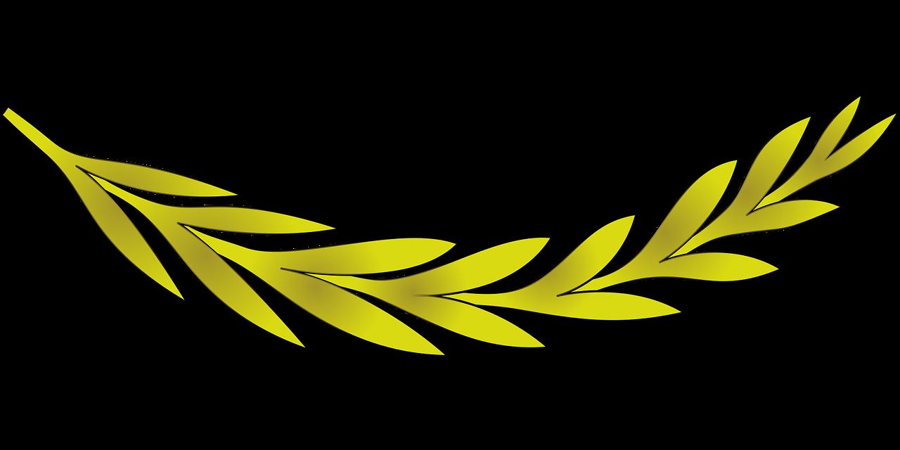 branche olivier